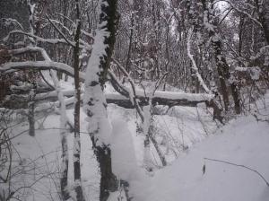 zima_12