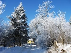 zima_70