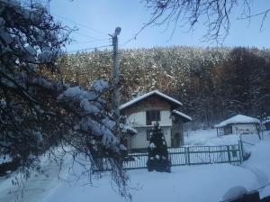 zima_14