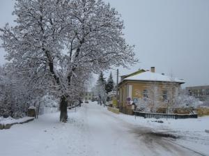 zima_28