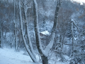 zima_31