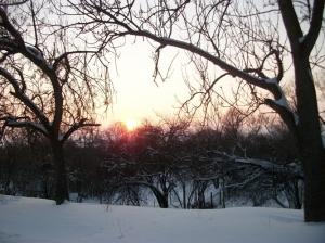 zima_35