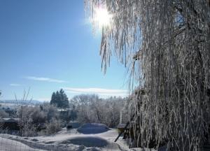 zima_47