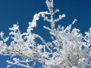 zima_48