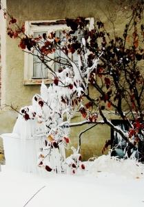 zima_63