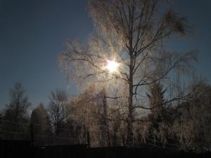 zima_68