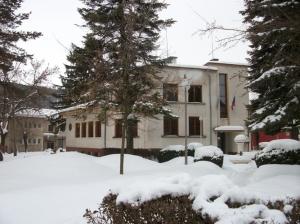 zima_82