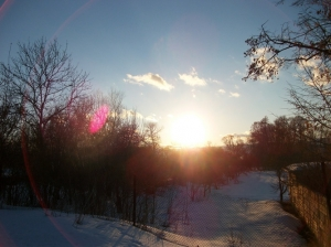 zima_83