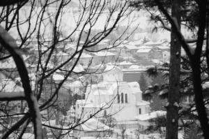 zima_97