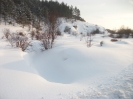 zima_81