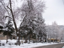 zima_92